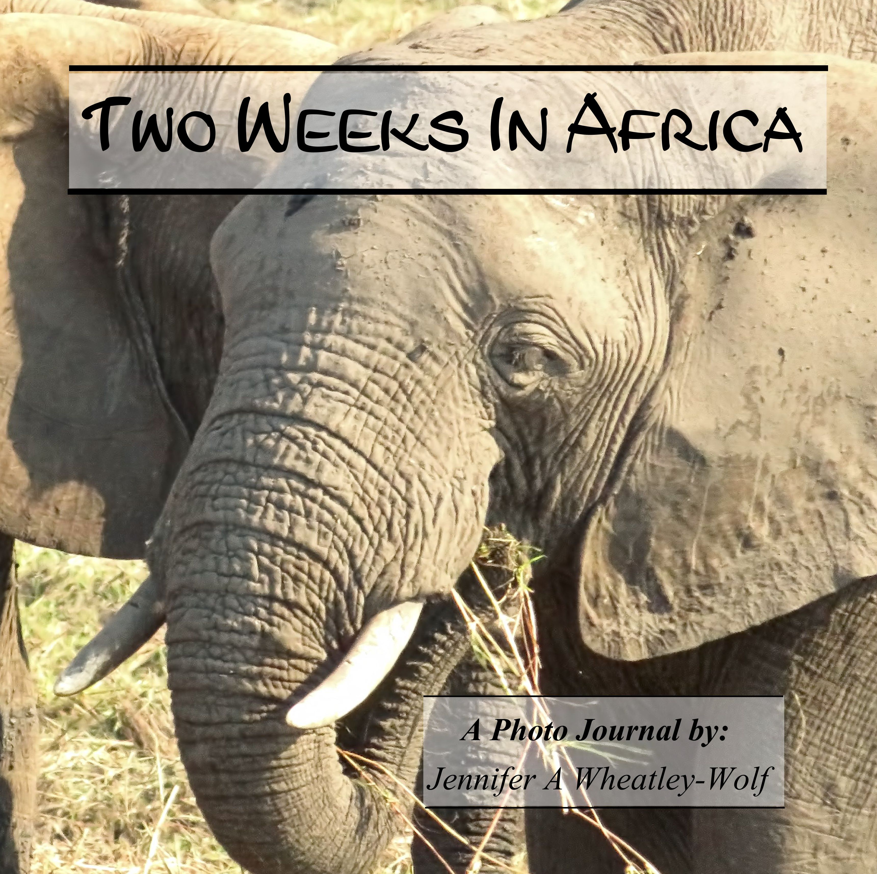 two-week-in-africa-a-photo-journal