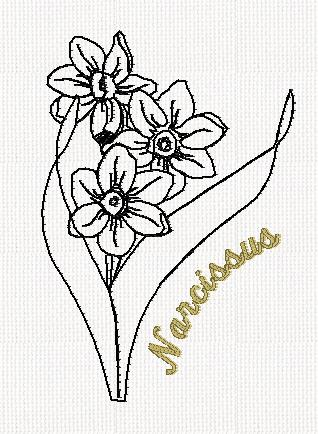 botanical-narcissus-flower-redwork-embroidery