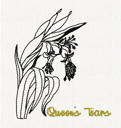 botanical-queens-tears-flower-redwork-embroidery