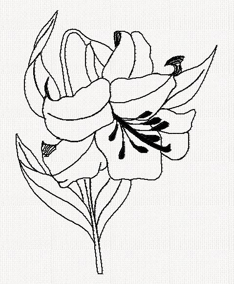 abc-lily-redwork-embroidery