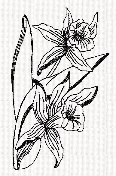 orchid-flower-redwork-embroidery