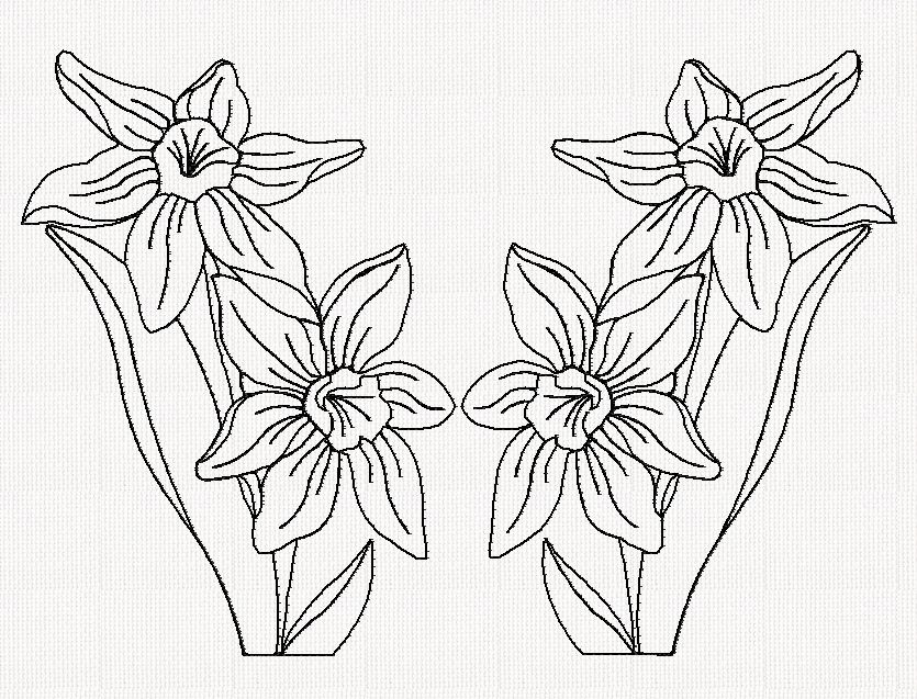 Jonquil Flower Drawing Floral-redwork-index-htm