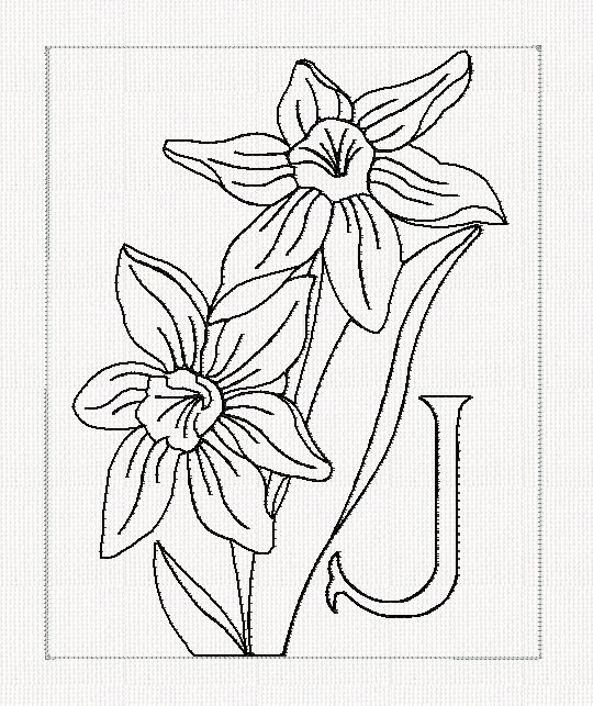 Jonquil Flower Drawing Abc-j-jonquil-lines-flowers