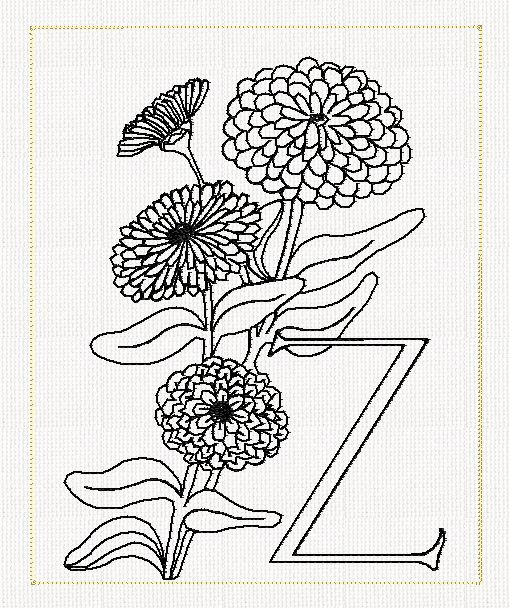 Zinnia Line Drawing : Zinnia line drawing imgkid the image kid has it